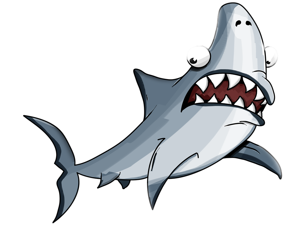 Vector sharks muscle cartoon. Collection of free elasmobranch