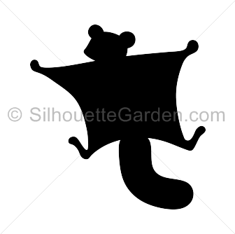 Vector squirrel flying. Silhouette