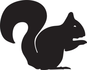 Vector squirrel simple. Clip art at clker