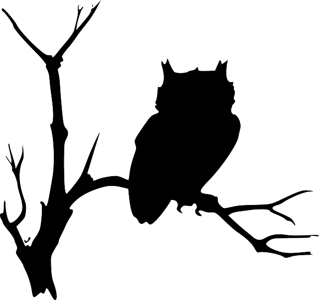 Vector squirrel tree silhouette. View source image graphic