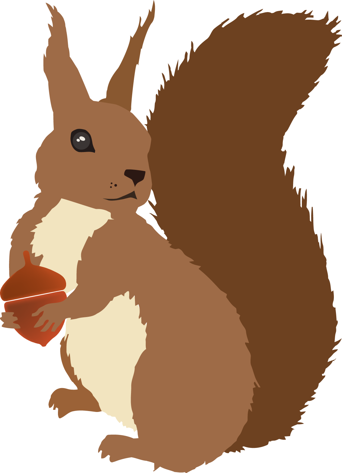 Vector squirrel. Sciurusvulgaris redsquirrel trabajos hechos