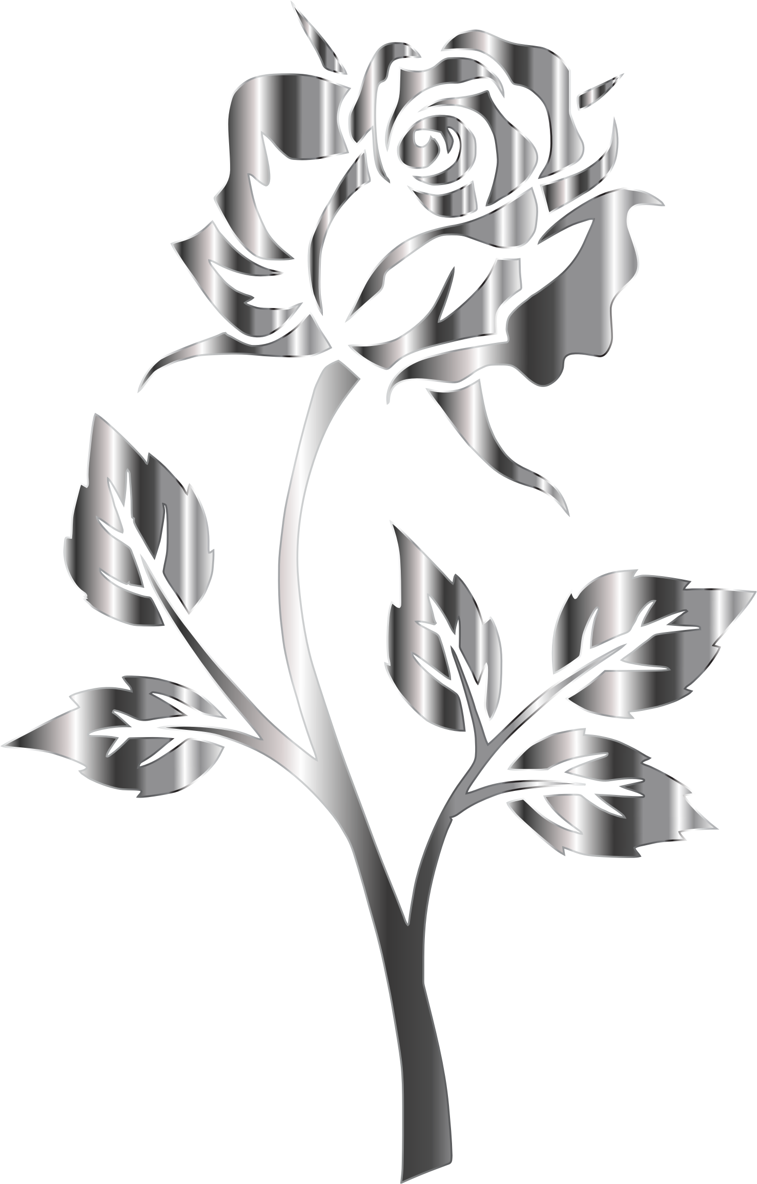 Vector steel png. Stainless rose silhouette no