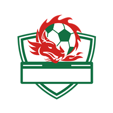 Vector stock.com background. Red dragon soccer ball