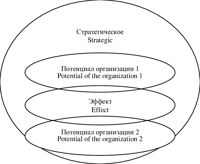 Vector system stakeholder. Positive synergy effect of