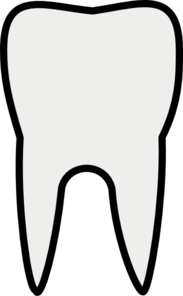 Vector toothbrush art. Tooth molar clip at