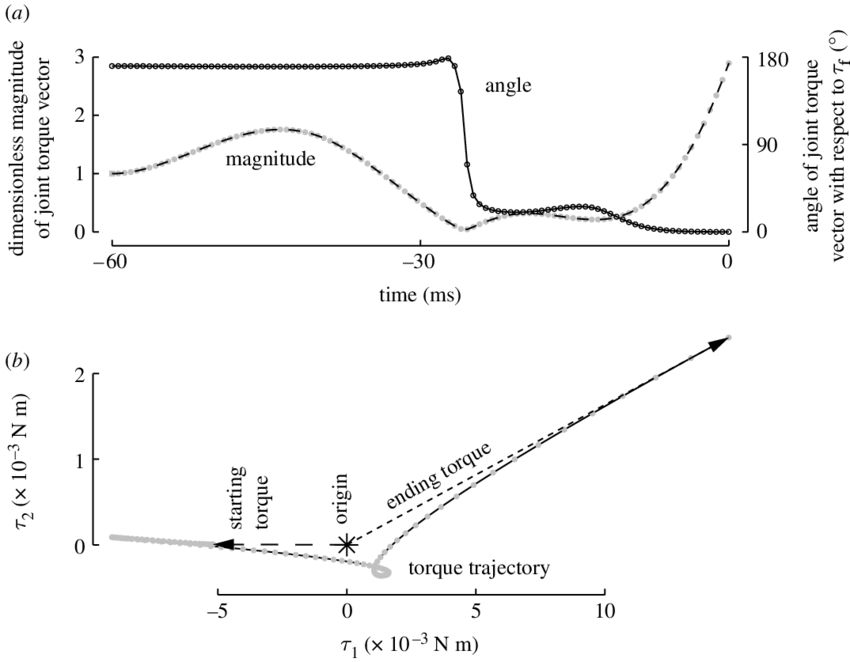 Vector torque. Optimal joint transitions for