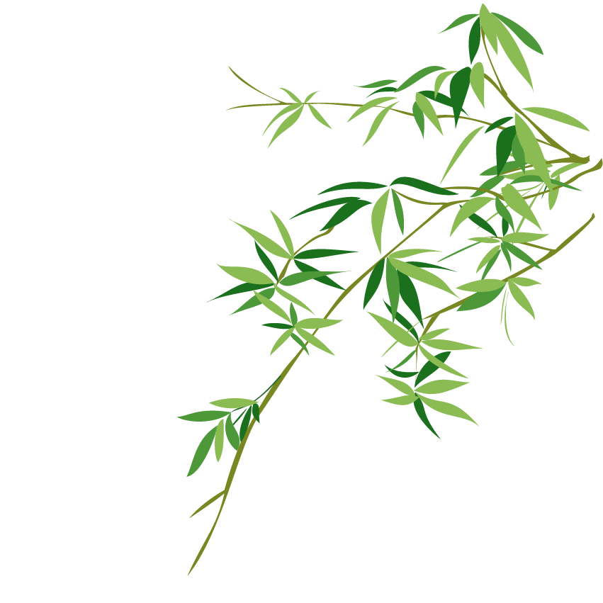 Vector triangles leaf. Bambusodae chinese painting bamboo