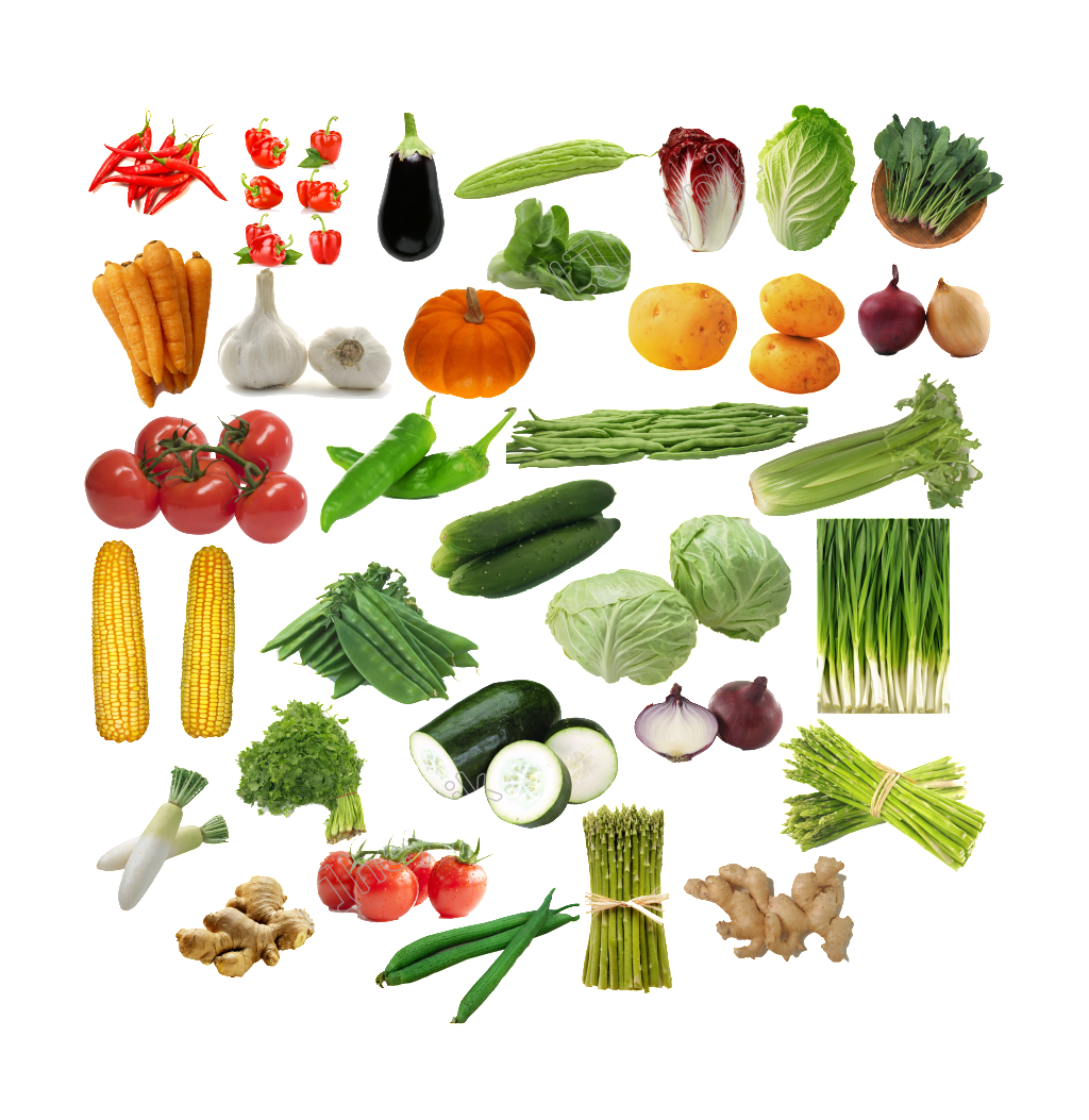 Vector vegetables geometric. All kinds of fruits