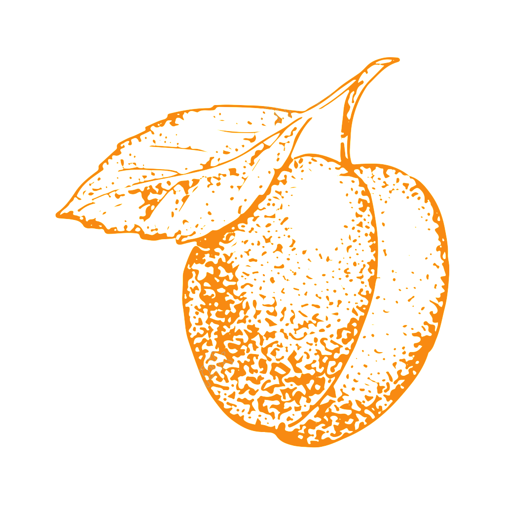 Vector vegetables realistic. Hand painted fairy peach