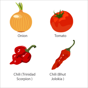 Vector vegetables. Food production designs to