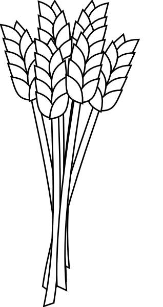 Vector wheat black and white. Clip art online royalty
