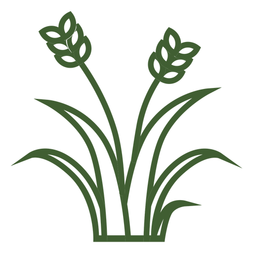 Vector wheat ornamental. Grass icon transparent png