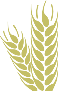 Vector wheat simple. Clip art at clker