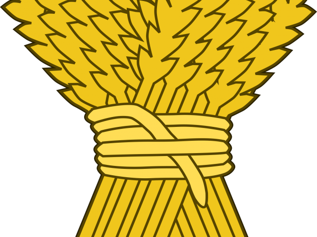 Vector wheat straw. Picture free download