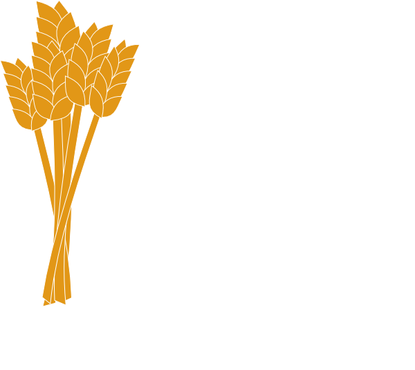 Vector wheat tree. Image result for oktoberfest