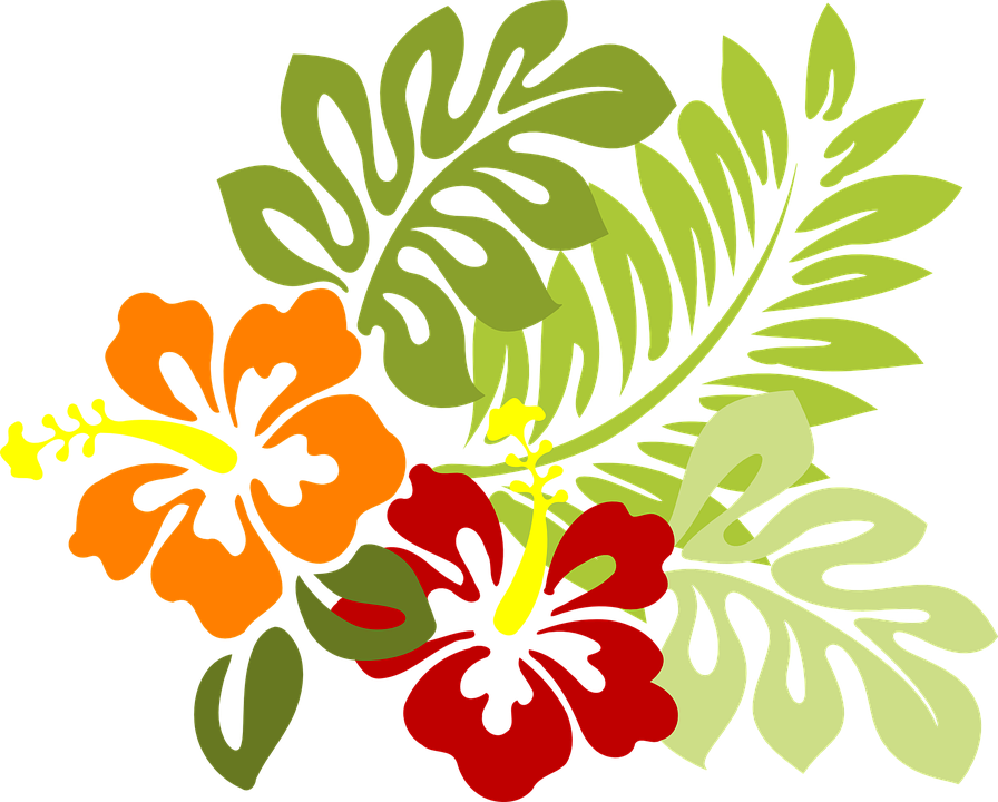 Hojas Vector Tropicales Transparent Png Clipart Free Download Ya