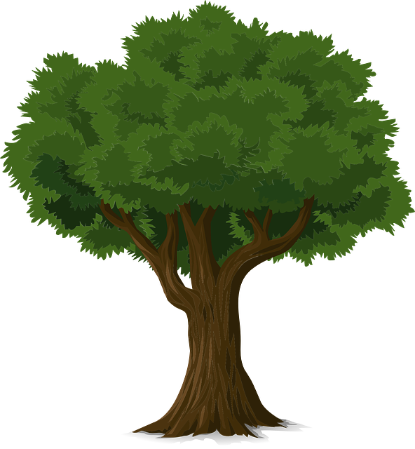 Vector nature forest border. Free image on pixabay