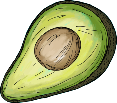 Vegetable clipart avocado. Leaf fruit free commercial