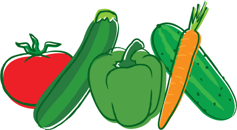 Veggies clipart organic vegetable. Food veggie burger seed