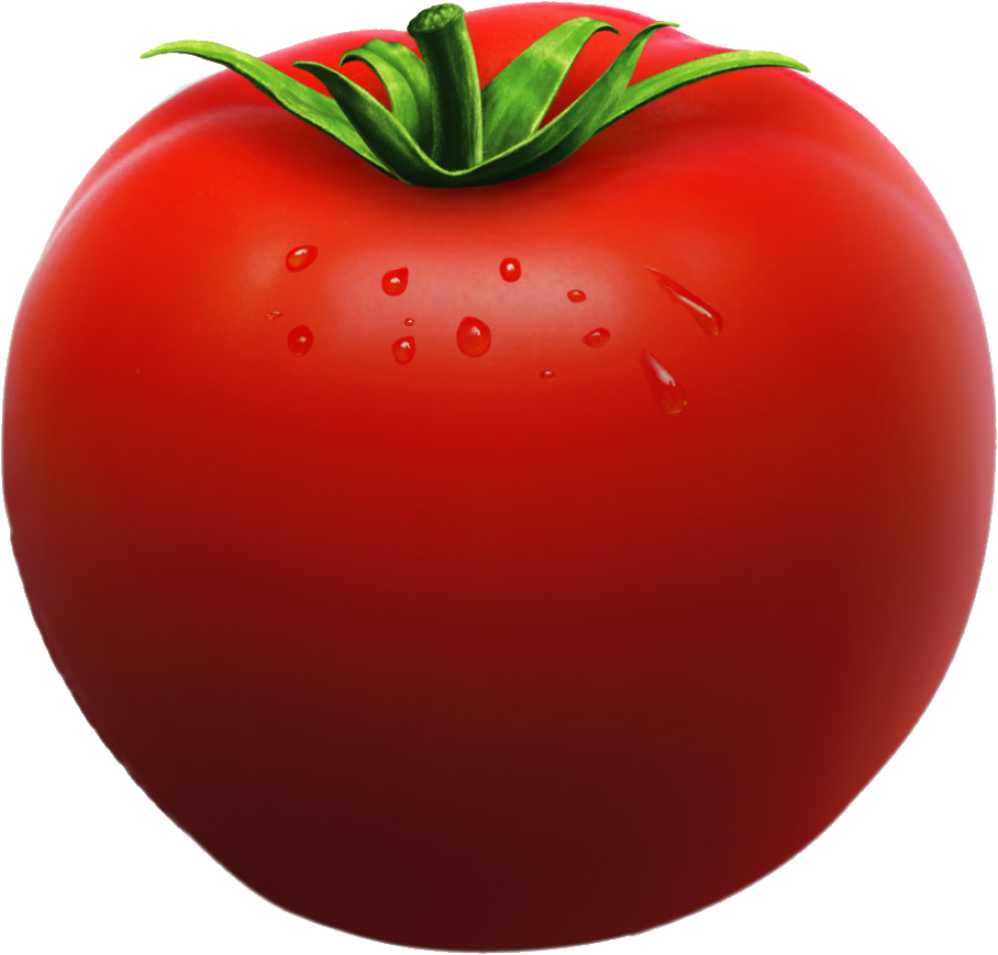 Vegetable clipart vegetable seed. Tomato one seeds organic