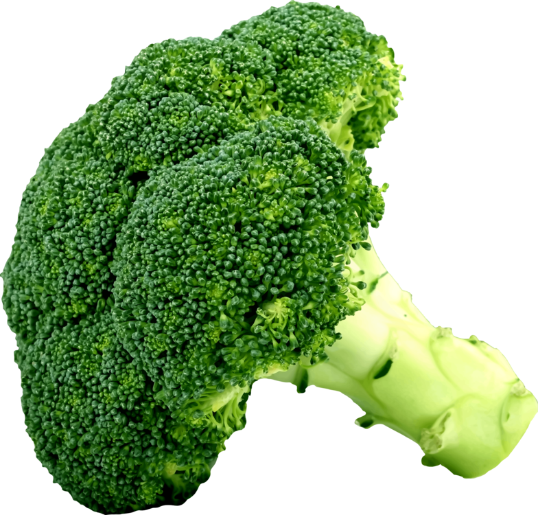 Broccoli clipart useful food. Chinese cabbage vegetable cauliflower