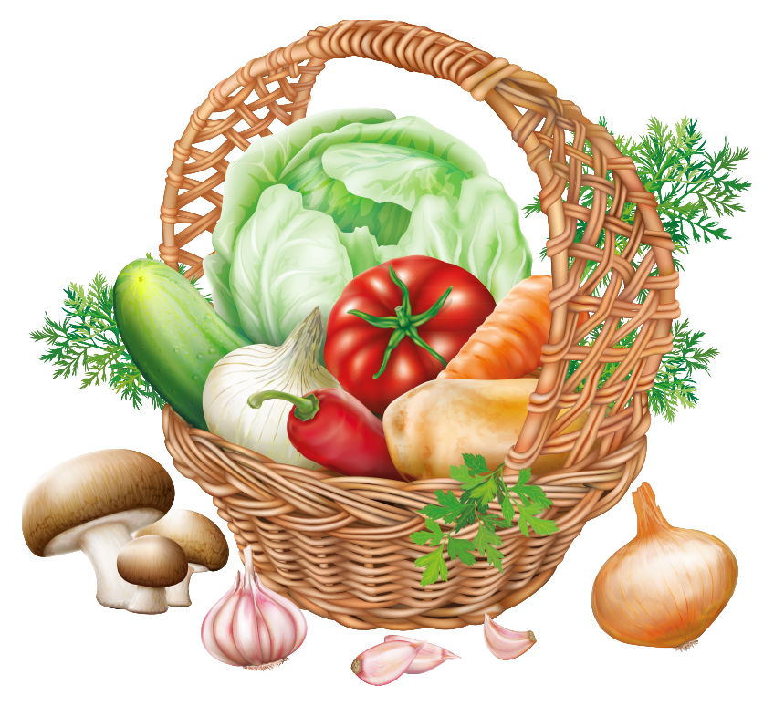 Vegetables clipart png. Basket with image gallery