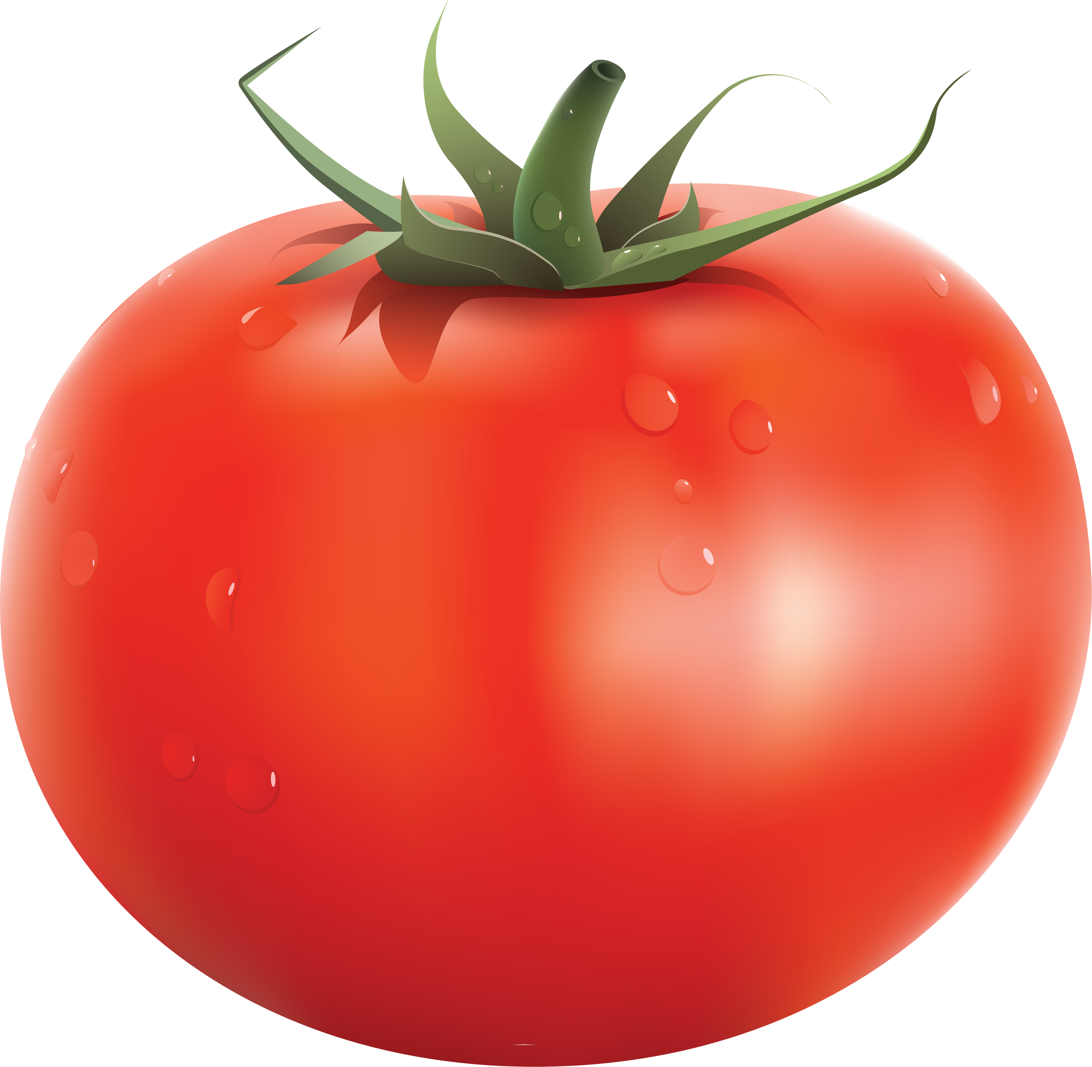 Vegetables clipart png. Only tomato hd transparent
