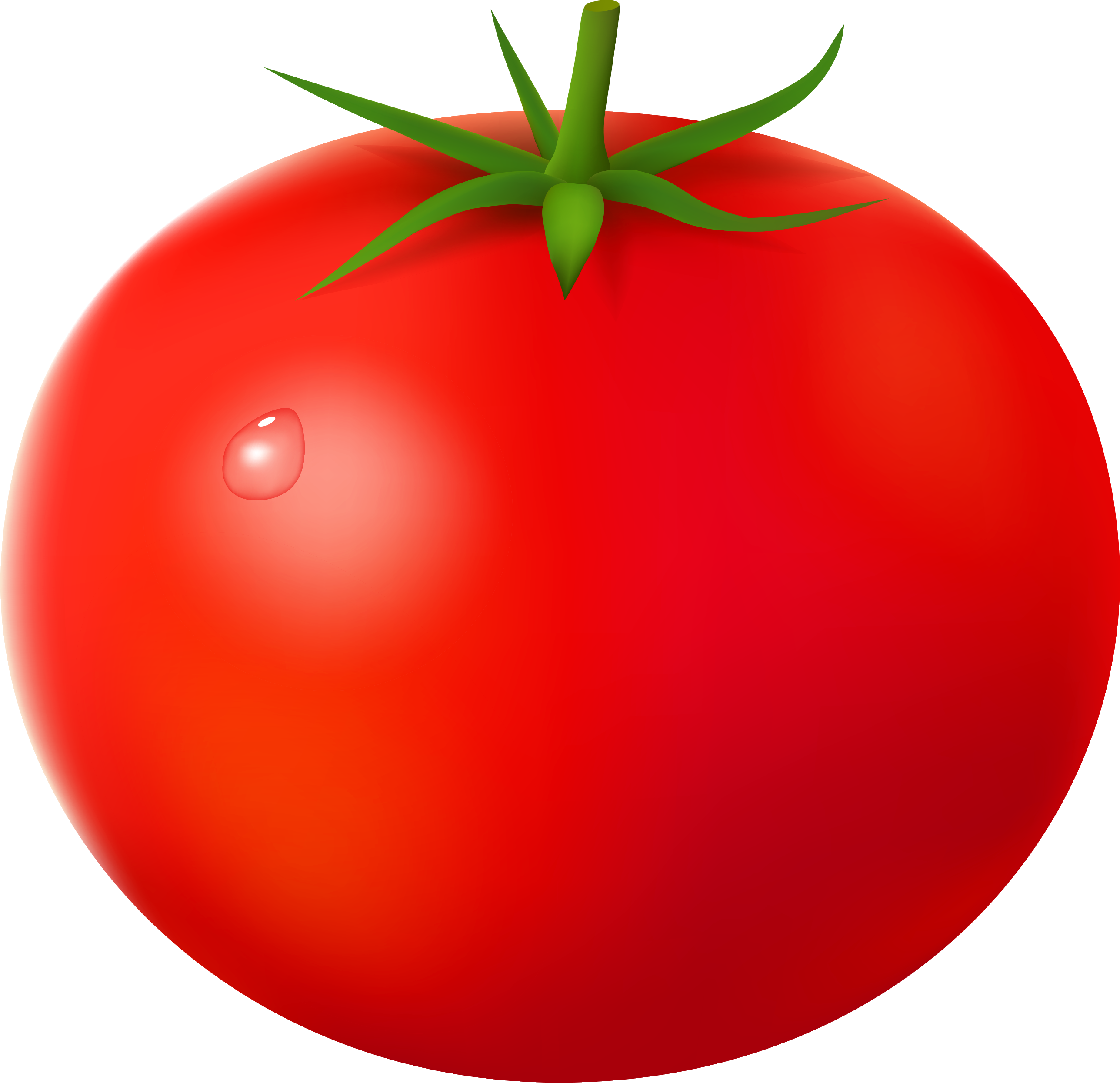 Tomato clipart two. Png images free download
