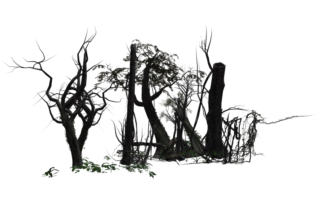 Intricate drawing forest. By free stock wayne
