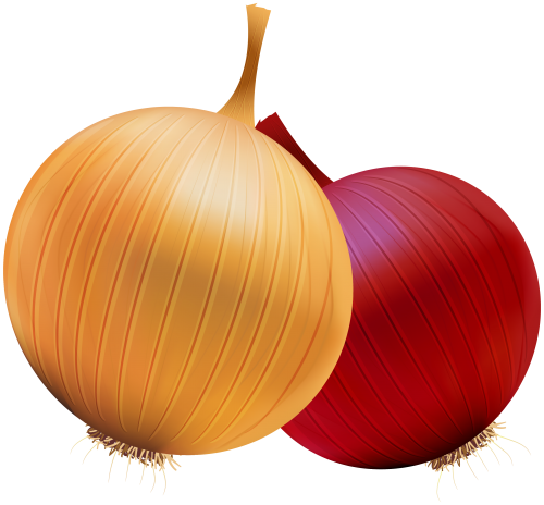 Veggies clipart. Onion and red png