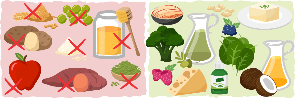 Comprehensive guide to the. Veggies clipart plant based diet png free download