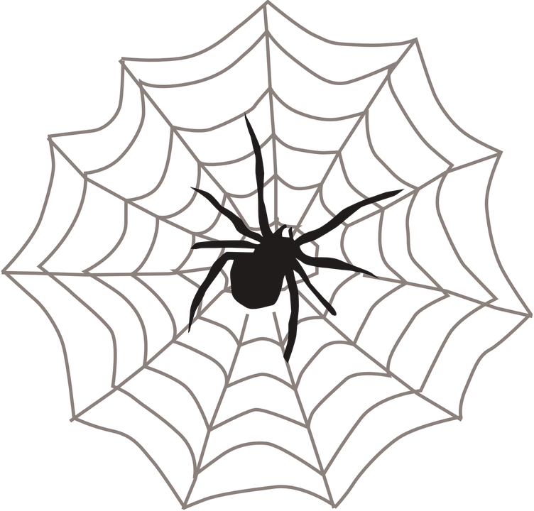 Drawing veins halloween. How spider can indicate
