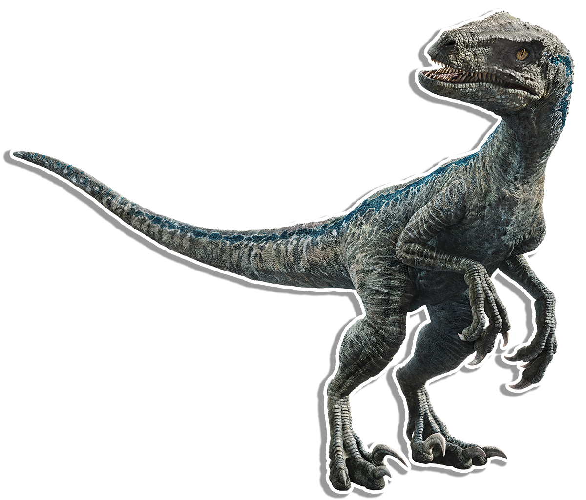 Velociraptor arm png. Dinosaur protection group swift