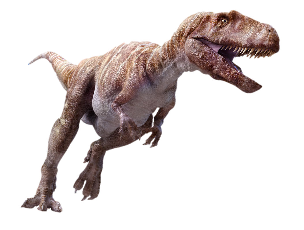 Velociraptor body png. Megalosaurus dinopedia fandom powered
