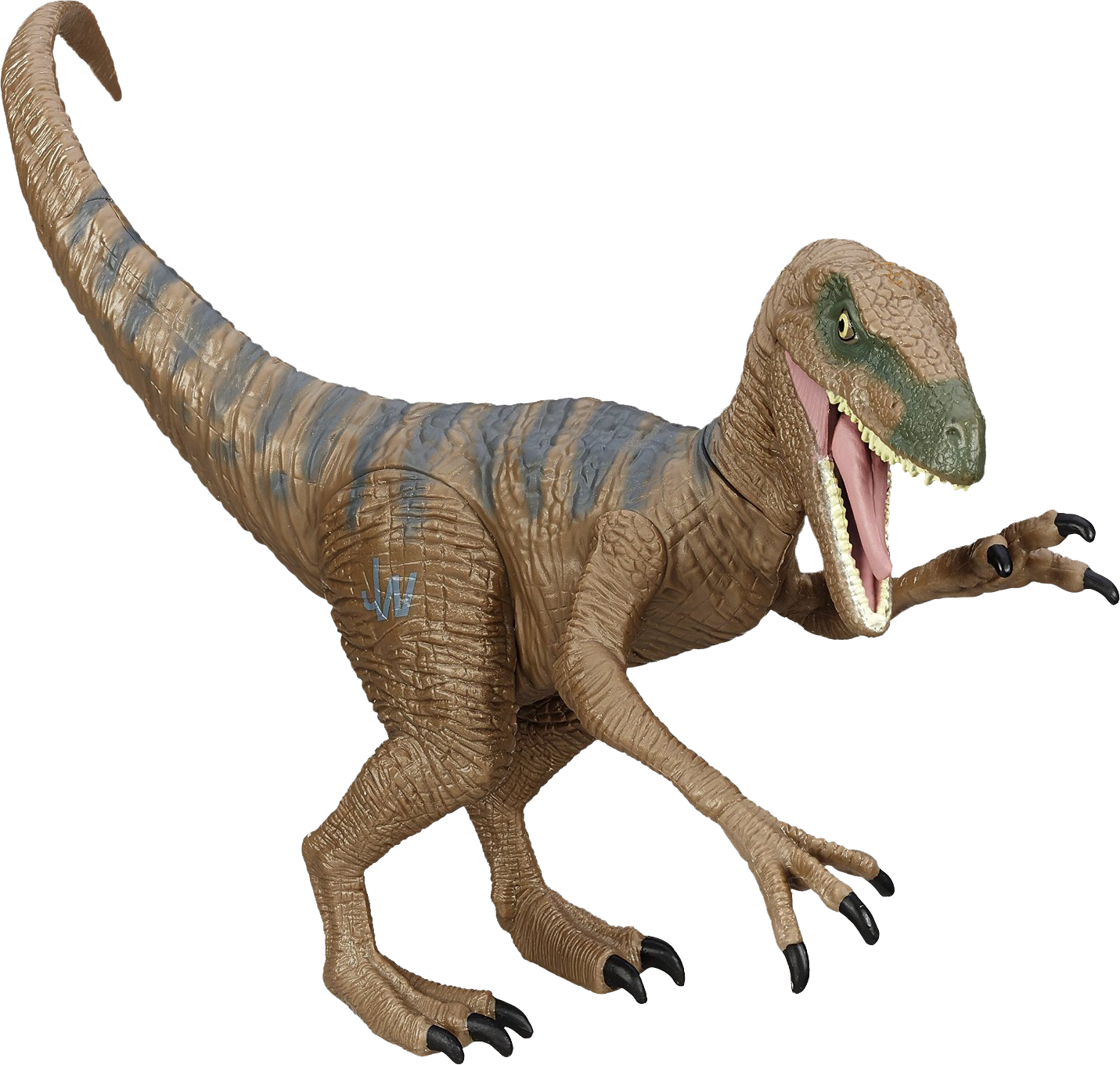 velociraptor transparent