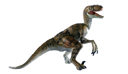 Velociraptor body png. Dinosaur poem science poetry