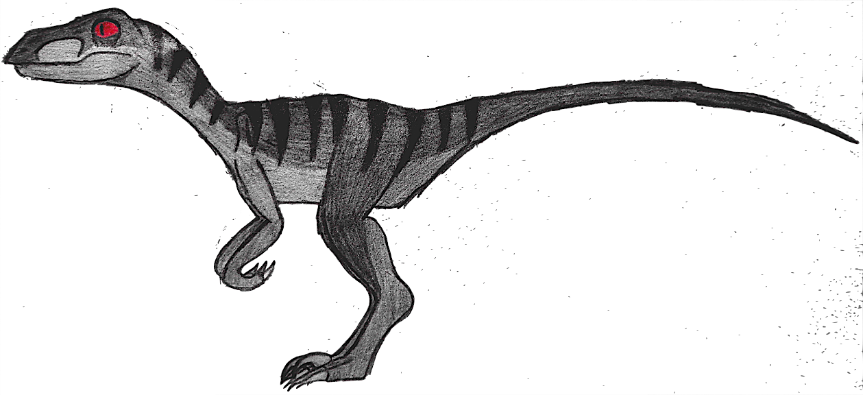Velociraptor drawing png. Vinny the by shadowstyle