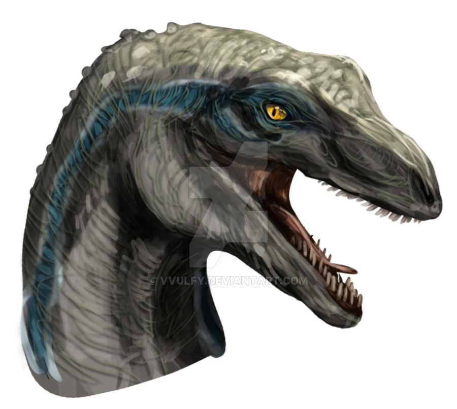 Velociraptor head png. Blue the by vvulfy