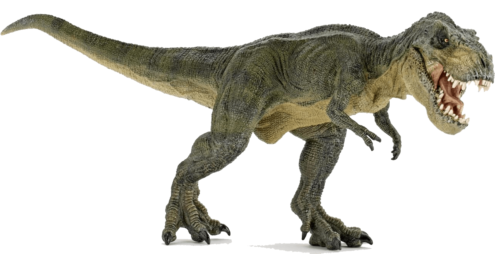Trex png transparent background. Dinosaurs images stickpng dinosaur