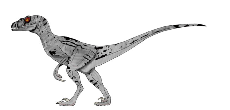 Velociraptor png. Download free background image