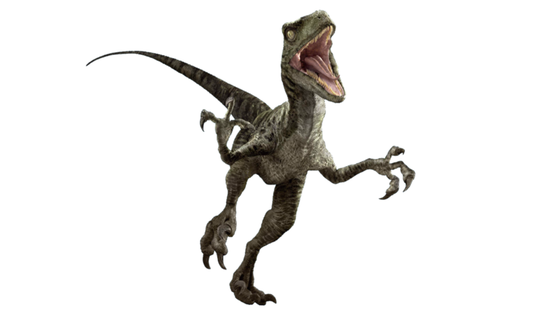 Velociraptor png. Download free photo dlpng