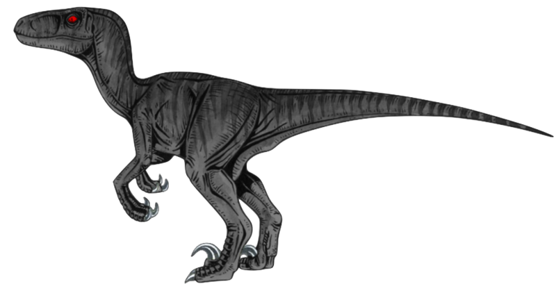 Velociraptor vector art. Download free png transparent