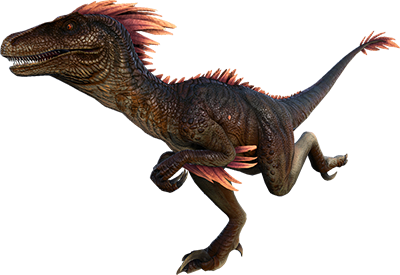Velociraptor transparent ark. Raptor kibble recipes usage