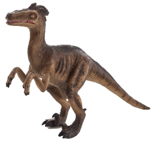 Velociraptor transparent player. Mojo