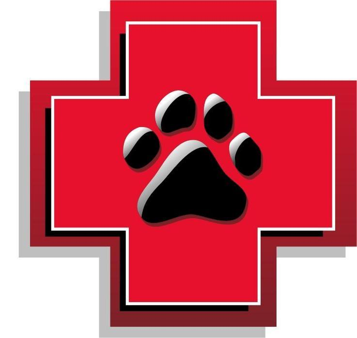vet clipart emergency