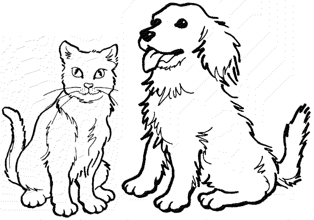 Vet drawing coloring page. Dog and cat at