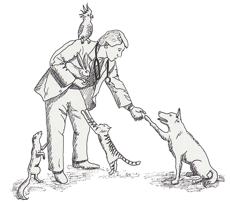 About us woodside animal. Tom drawing clip art library