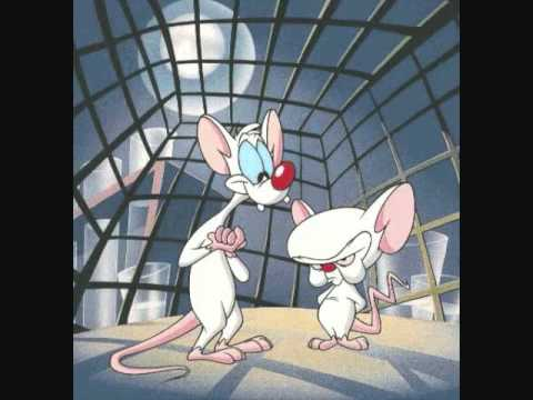 Video pinky and the brain. Youtube clipart images gallery