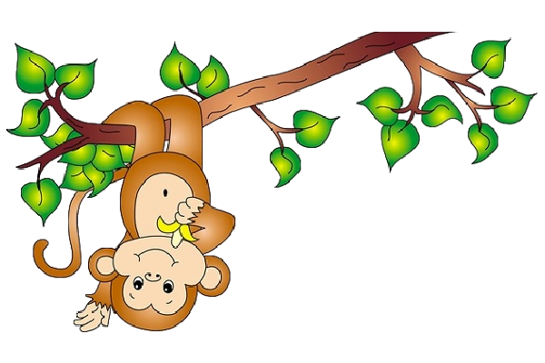 Monkeys eating bananas clipart png. Monkey on a vine