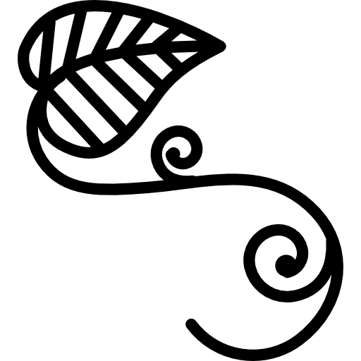 Vine icon png. Leaves outline with vines